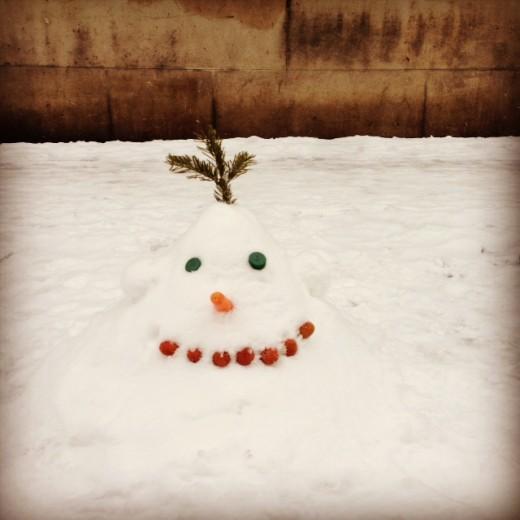 pretavoyager-snow2