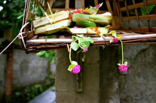 Bali _ CAmorose
