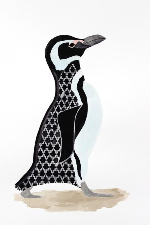 magellanicpenguin